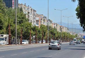 İzmir Büyükşehir Belediyesi, Ankara Caddesi'ne 250 palmiye dikiyor