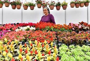 Bayındır Uluslararası Çiçek Festivali başladı