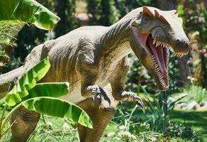 Dinozor mu yoksa Dinazor mu ? TDK'ya göre nasıl yazılır?