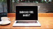 İndexsiz URL nedir? Ne İşe Yarar?