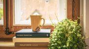 Evde Kitap Okuma Köşesi Nasıl Oluşturulur?