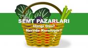 Pendik (İstanbul) Semt Pazarları