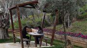 İzmir'e yeni nefes: Zeytin Park Yaşam Korusu